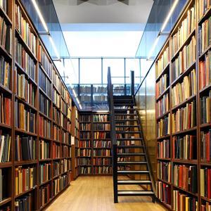 Библиотеки Белебея